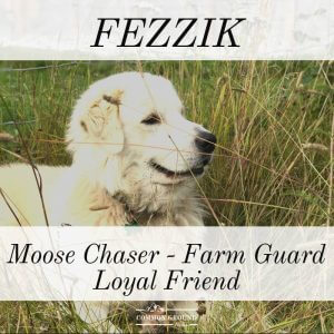 fezzik the alaska farm dog