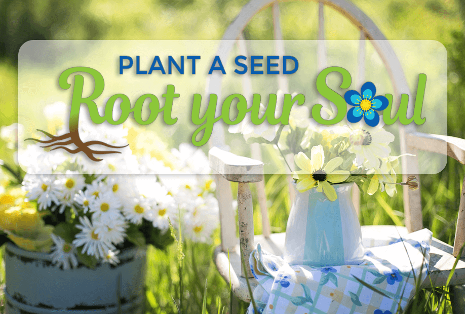 plant a seed root your soul